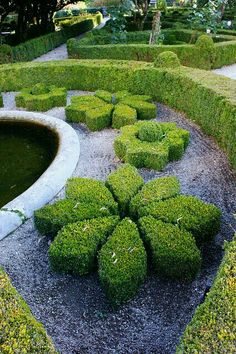 Boxwood Topiary - i want this in my garden! Boxwood Garden, Topiary Garden, Boxwood Topiary, Garden Paths, Garden Art, Garden Landscaping, Formal Gardens, Outdoor Gardens, Amazing Gardens