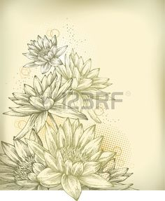 Background with hand drawn water lilies  Stock Vector