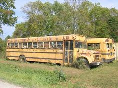 Old School Bus, School Buses, Bus City, Abandon, Vintage School, Busses, Old Skool, Trucks, Cars