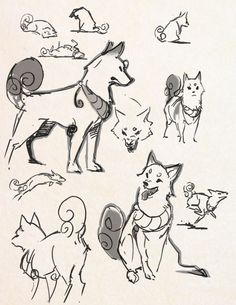 designing a shiba dog character missing my doggy so much…
