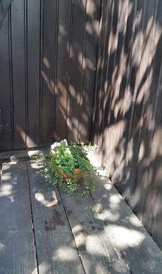 Vegyes virágcserép