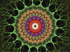 organic cell