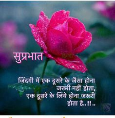 Good Morning Hindi Messages, Happy Good Morning Quotes, Morning Prayer Quotes, Good Morning Roses, Good Morning Beautiful Images, Good Morning Images Hd, Good Morning My Love, Good Morning Inspirational Quotes, Morning Greetings Quotes