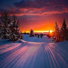 Sunset blazing as you ski through perfect tracks 😍 Oppland, Norway. 📷 Jan-Petter Dahle Source by wildmerch Winter Pictures, Nature Pictures, Cool Pictures, Beautiful Sunset, Beautiful World, Beautiful Places, Winter Poster, Landscape Photography, Nature Photography
