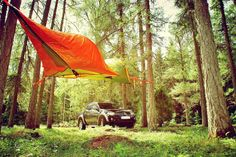 에스토니아의 숲속의 아침은 이렇게… #treetent#tent#camping#tentsile#텐트사일#magforce#magforcekorea#맥포스#맥포스코리아