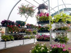 WeatherPort Greenhouse - Greenhouse Kits for Large or Small Greenhouses!