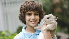 Doomed Rabbit To Teach 8-Year-Old About Responsibility | Full report at theonion.com