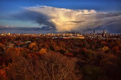 Afternoon light over Boston on 11/11/11 as seen from the Mt. Auburn Cemetery tower in Cambridge.