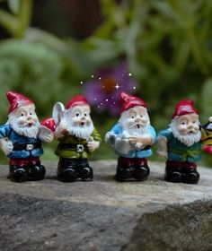 Set of Four Tiny Gnomes