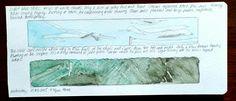 Manasota Key Florida ecology sky and Earth watercolor sketch art Journal visual diary