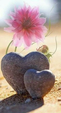 I knew someone who began collecting heart-shaped rocks as part of her grieving process. Her spirits rose every time she came across one out in nature.