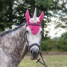 roze eenhoorn oornetje unicorn vliegenmuts paard eenhoorn, unicorn horse, unicorn horn, fly bonnet unicorn, pink unicorn, fatasy horse, photoshoot probs