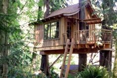 Treehouse Point is a Hotel in Issaquah. Plan your road trip to Treehouse Point in WA with Roadtrippers. Beautiful Tree Houses, Cool Tree Houses, Beautiful Homes, Treehouse Hotel, Building A Treehouse, Treehouse Ideas, Patio, Backyard, Kids Yard