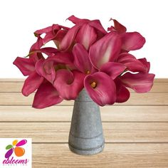 You will receive Dark Pink Mini Callas for your special event. Perched on top of a long, elegant stem this bloom will make an eye-catching addition to any anniversary, ladies tea or Spring/ Summer wedding. Named after the Greek word for beauty, calla lilies are a traditional symbol of marriage.  Features:  ✔ 10 Stems Minicallas 35cm - 40cm ✔ Box contains: 8 Bunches 10 stems ✔ Clear Sleeve #Minicallas #Lilies #Pink #Costco #EbloomsDirect #Samsclub Calla Lily Flowers, Calla Lilies, Types Of Flowers, Fresh Flowers, Classic Romantic Wedding, Greek Words, Summer Wedding, Special Events, Hot Pink