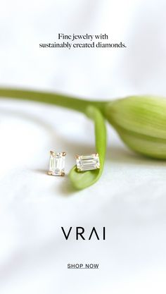 The Solitaire Emerald Diamond Studs by Vrai is a timeless staple featuring a sustainably created diamond on a solid gold chain. Refined to the core, our prong setting features an open back gallery inviting light in from all angles for maximum brilliance. Photo Jewelry, Jewelry Box, Jewelery, Jewelry Accessories, Fine Jewelry, Fashion Jewelry, Jewelry Design, Music Jewelry, Jewelry Displays