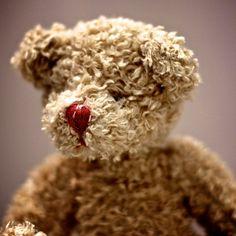 Teddy Bear.