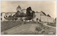 Vignes chateau - Delcampe.net
