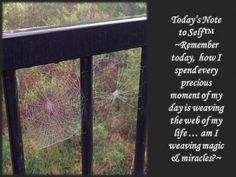 Weaving our webs
