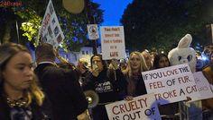 Ativistas realizam protesto na London Fashion Week