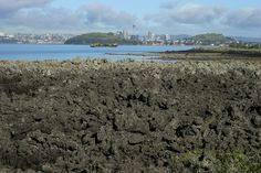 Rangitoto Island Walk - Fantastic views across to Auckland city and beyond. Great walk for the whole family. Rangitoto walking track is worth the walk to the top for the view.