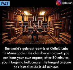 Conspiracy Theories, Weird World, Weird Facts, Photo Manipulation, Minneapolis, Ceiling Lights, Movie Posters, Bucket, Canning