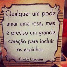 Qualquer um pode amar uma rosa,mas é preciso um grande coração para incluir os espinhos....