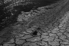Imagem captada nos esteiros do rio Sado em Setúbal
