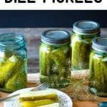 Kosher Dill Pickles, Canning Pickles, Easy Canning, Canning Recipes, Kerr Jars, Canning Process, Yellow Mustard Seeds, Refrigerator Pickles, Pickling Cucumbers