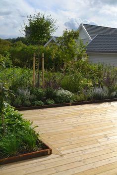 Fresco, Get Outside, Garden Inspiration, Home Projects, Outdoor Gardens, Garden Design, Pergola, Planters, Sidewalk