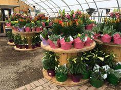 Beautiful Glass Flower Only At Brookside Garden Center, 46 Hartford  Turnpike, Tolland 860 875 8525 | Garden Art | Pinterest | Garden Art And  Gardens