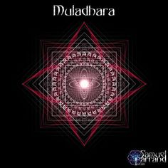 Muladhara (Sanskrit: मूलाधार) or root chakra is symbolized by a lotus with four petals and the color red. This center is located at the base of the spine in the coccygeal region. It is said to relate to the gonads and the adrenal medulla, responsible for the fight-or-flight response when survival is under threat. The corresponding deity for material element of this chakra is Prithvi. The seed syllable is LAM.