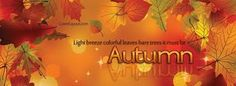 autumn leaves facebook covers - Google Search