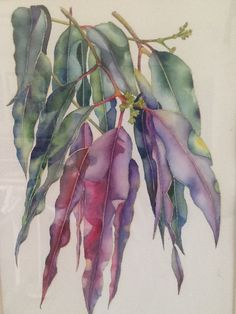 Watercolor Leaves, Watercolor And Ink, Watercolor Illustration, Watercolour Painting, Botanical Drawings, Botanical Art, Australian Native Flowers, Sketch Painting, Leaf Art