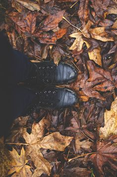 leaves // boots
