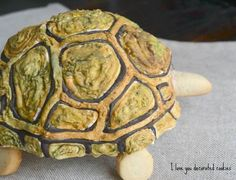 Close up! Cookie turtle shell, all cookie and RI
