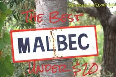 The Best Malbec Under $20 {wineglasswriter.com/}