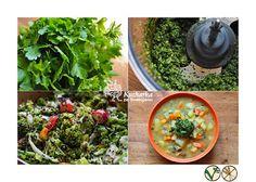 Kuchařka ze Svatojánu: Byliny Pesto, Cantaloupe, Salsa, Fruit, Ethnic Recipes, Food, Salsa Music, The Fruit, Meals