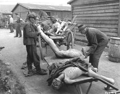 People placing corpses on wagons at the Mauthausen-Gusen Concentration Camp in Mauthausen, Austria.