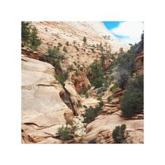 Decorate your walls with National Park canvas prints from Zazzle! Choose from thousands of great wrapped canvas to beautify your home or office. Zion National Park, National Parks, Vacation Pictures, Beautiful Moments, Canvas Art Prints, Wrapped Canvas, Utah, Grand Canyon, In This Moment