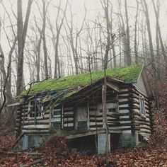 Ramshackle Cabin | #Photography