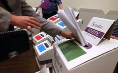 Despite Modest Showing at Polls Australias HEMP Party Wont Give Up
