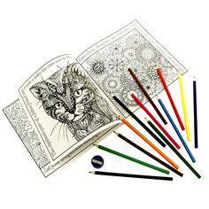 First Official Teacher Peach Teacher's Coloring Book