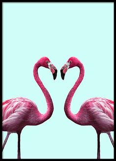 Flamingo heart Poster in the group New in at Desenio AB (2036)