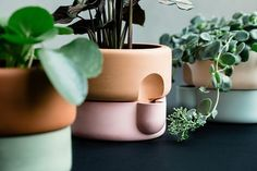 Ceramics designer Ann Kristin Einarsen has based her latest collection, Rolla, a series of functional planters, on the Plus Salt . Ceramic Plant Pots, Ceramic Clay, Ceramic Pottery, Indoor Planters, Planter Pots, Indoor Gardening, Vases, Self Watering Plants, Ceramic Design