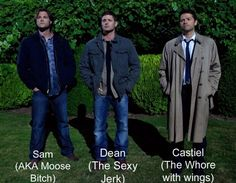 Castiel- The whore with wings