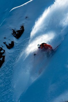 ALTA-holics need not remain anonymous!!!! Best ski resort reviews of 2012-13 | Ski Resort Guide West | SKI Magazine