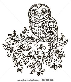 Vector Outline Black And White Illustration Design Element Doodle Style Owl On A