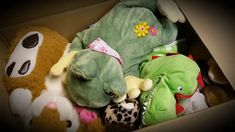 Germany with love to Syria-Contrabandista de Brinquedos: levando alegria para crianças Sírias, no perigo da guerra