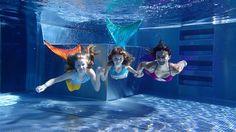 Nasze kursy pływania odbywają się na trzech basenach (dwóch we Wrocławiu, jednym na Bielnach Wrocławskich) - tak by każdy chętny mógł dobrać zarówno dogodną dla siebie godzinę, jak i lokalizację.  •basen ŚLĘŻA przy ul. Błękitnej 2-5, Bielany Wrocławskie   Basen sportowy – wymiary 25x15,4m,  temp. wody ok. 28°C, 6 torów, z czego 3 z regulowanym dnem.  Mały basen - wymiary 12,5x8m, temp. wody ok. 32°C,  z regulowanym w całości dnem.  Strefa brodzików  - z atrakcjami dla dzieci i jacuzzi.