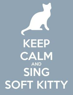 Soft Kitty Warm kitty little ball of fur....